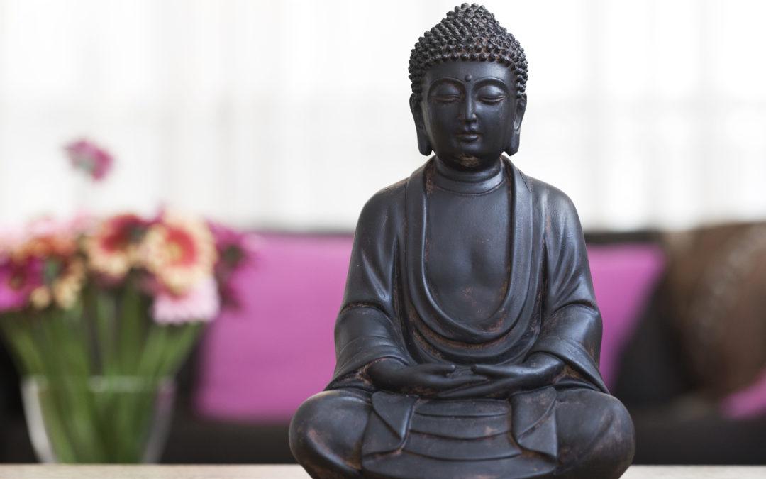Senses udvider og søger daglig leder til to studier
