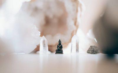 Informationsmøde om Senses' 100 timer yogalærergrunduddannelse
