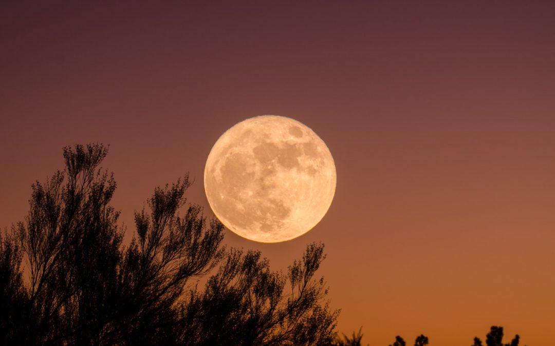 Fuldmåne meditation – 19. februar 2019