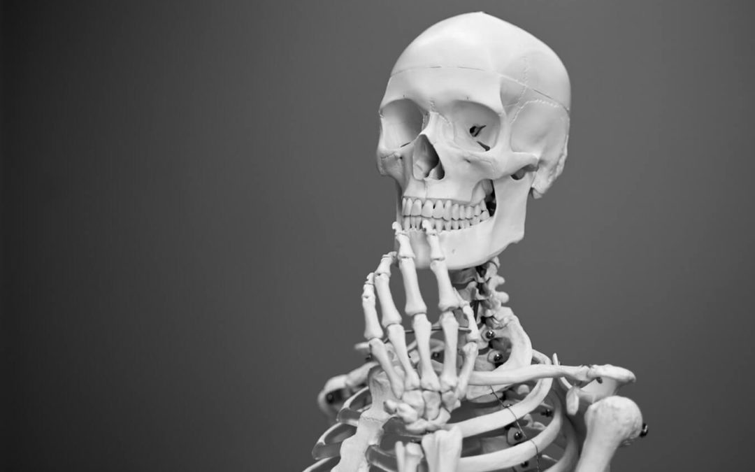 Senses 30 timers funktionel anatomi kursus