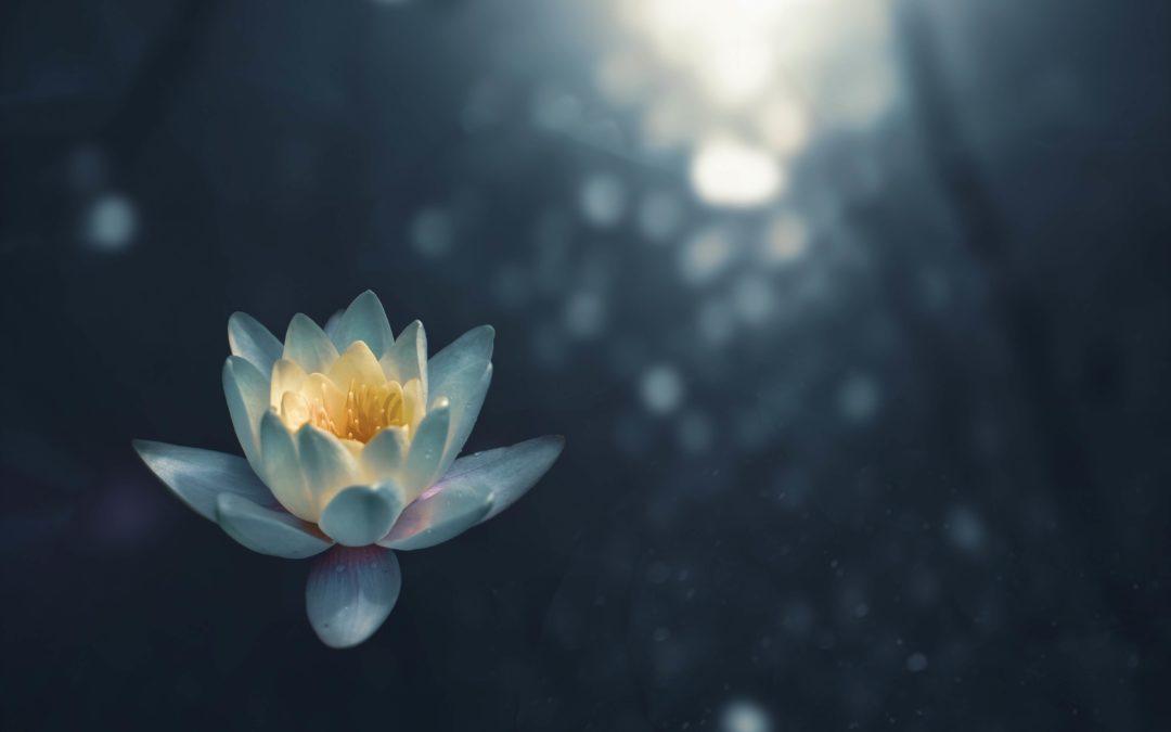 Nymåne Meditation